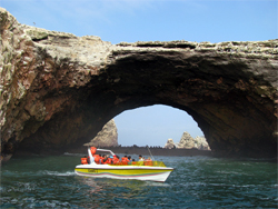 Ballestas Islands Boat Tour